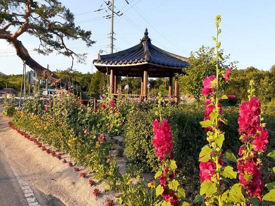 마을꽃길 은퇴목사사역.jpg
