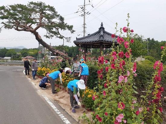 마을꽃길 은퇴목사 영향.jpg